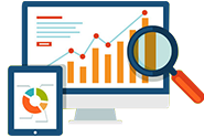 Advanced Analytics & Dashboards